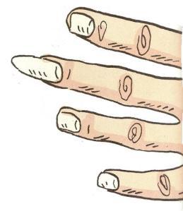 kuku-jari-tengah-paling-cepat-tumbuh
